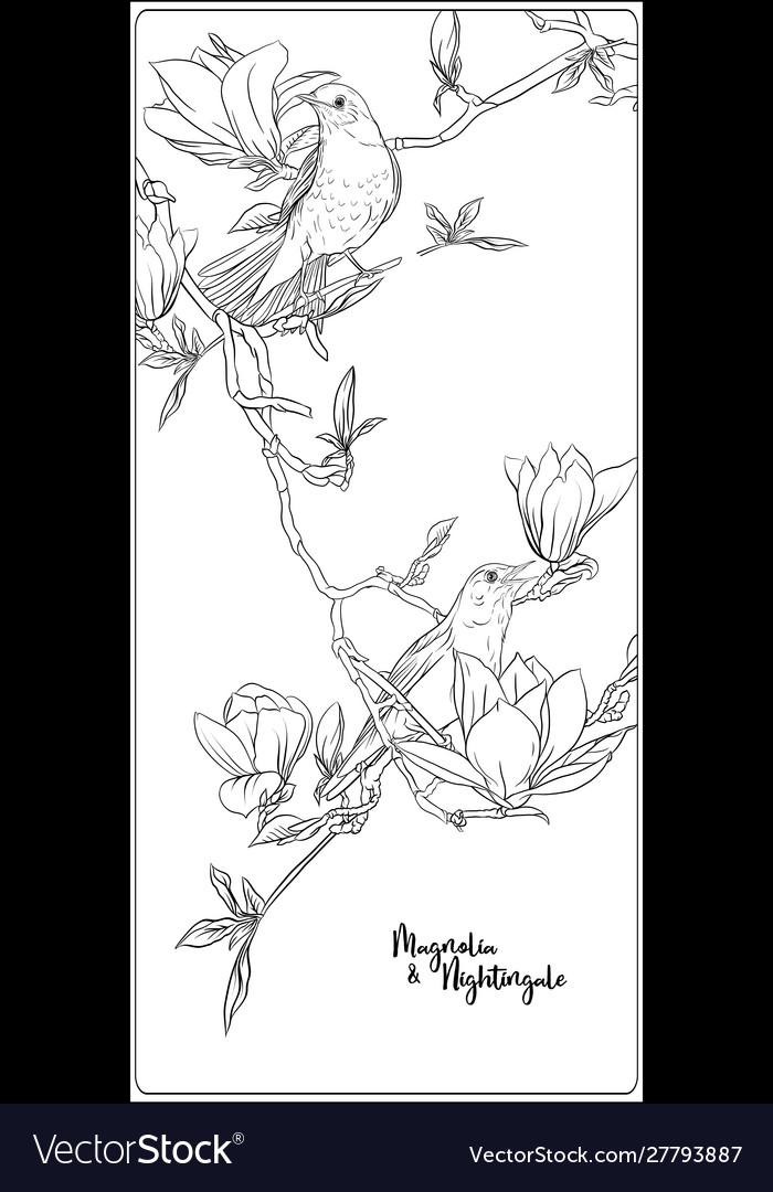 Magnolia Tree Branch Flowers Coloring Page Stock Vector (Royalty ... | 1080x700