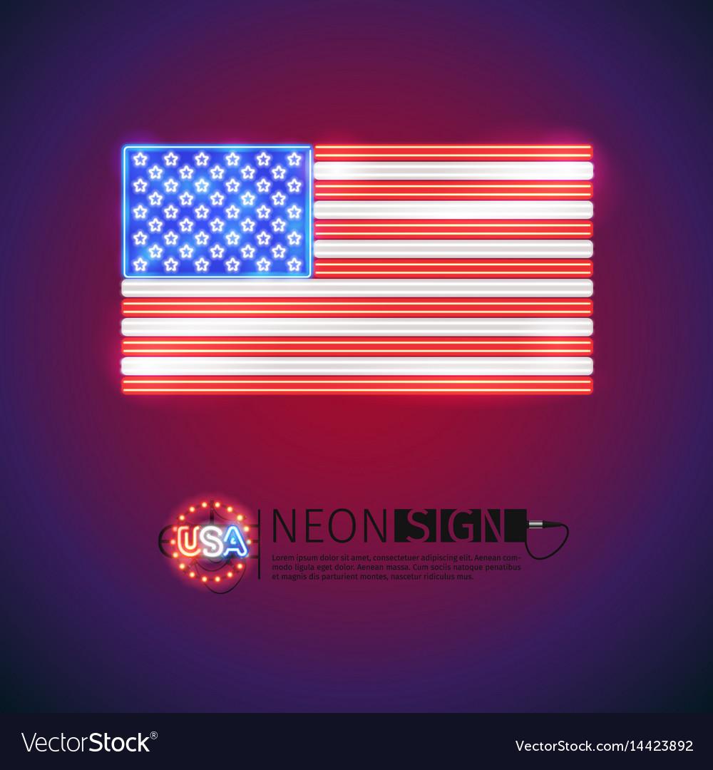 Neon sign usa flag vector image