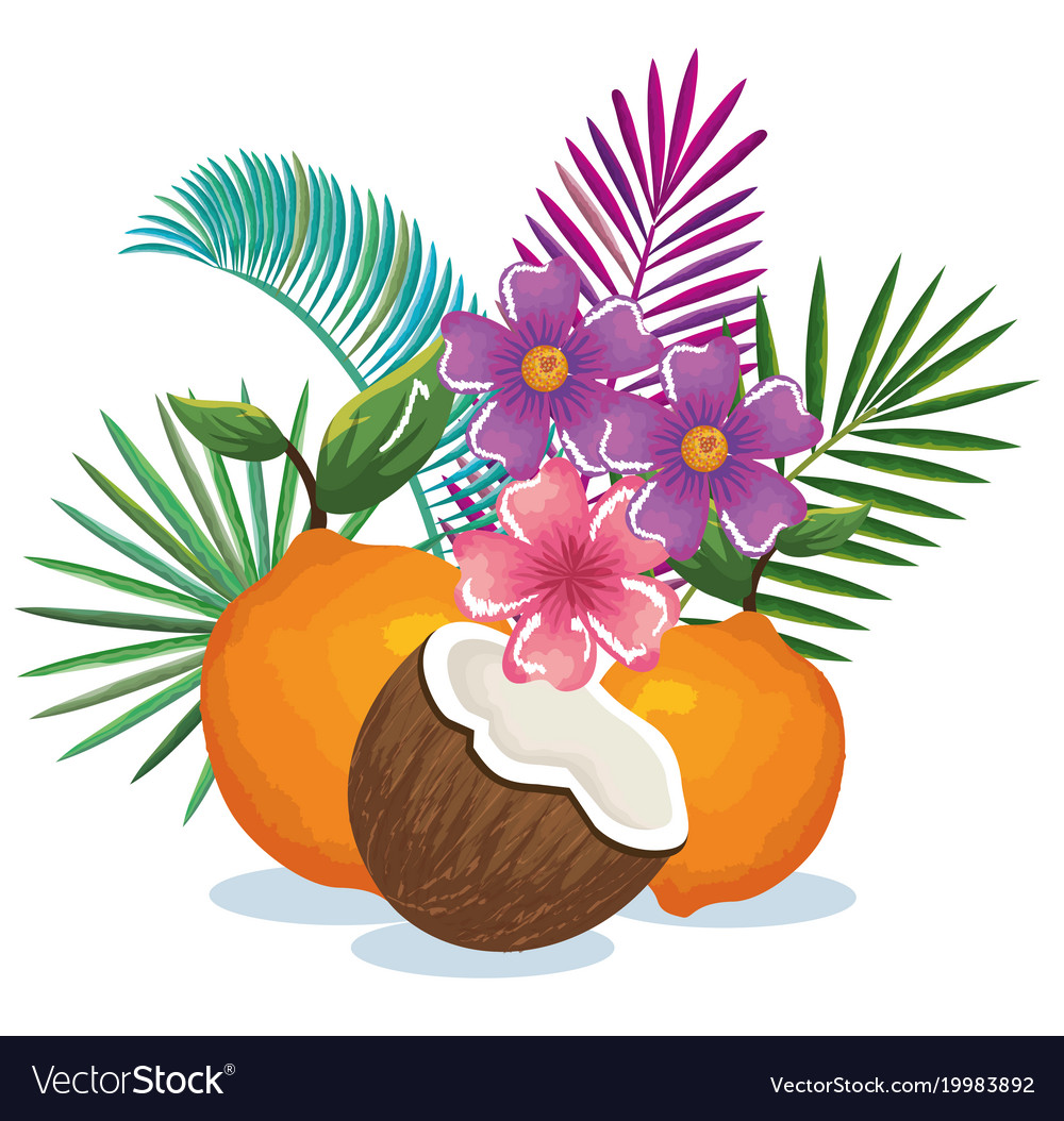 Tropical garden with orange and coconut
