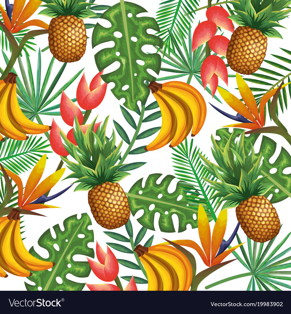 Tropical garden with pineapple and banana cluster vector image