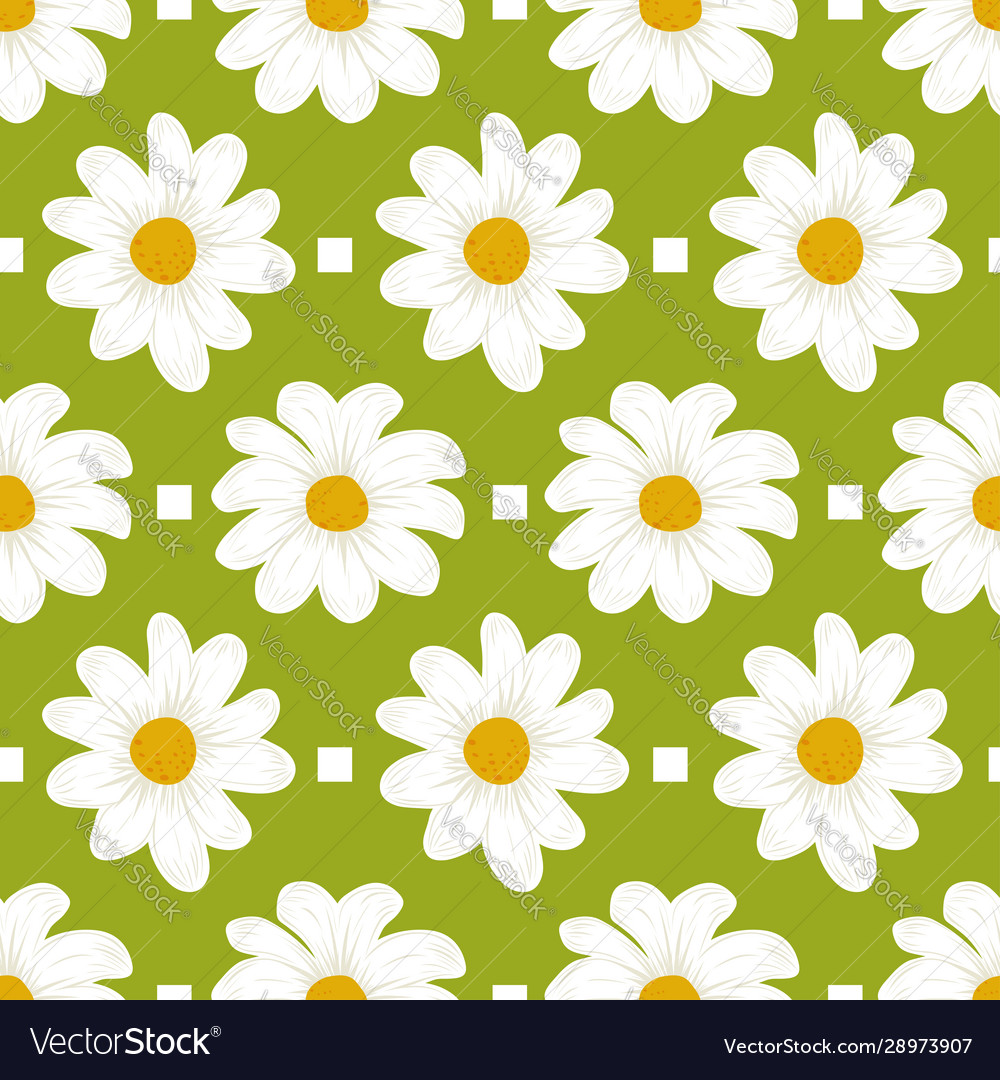Floral pattern daisy flowers seamless green