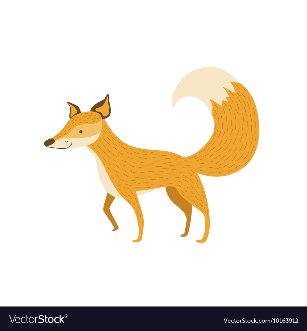 Fox Smiling Standing Like A Dog vector image