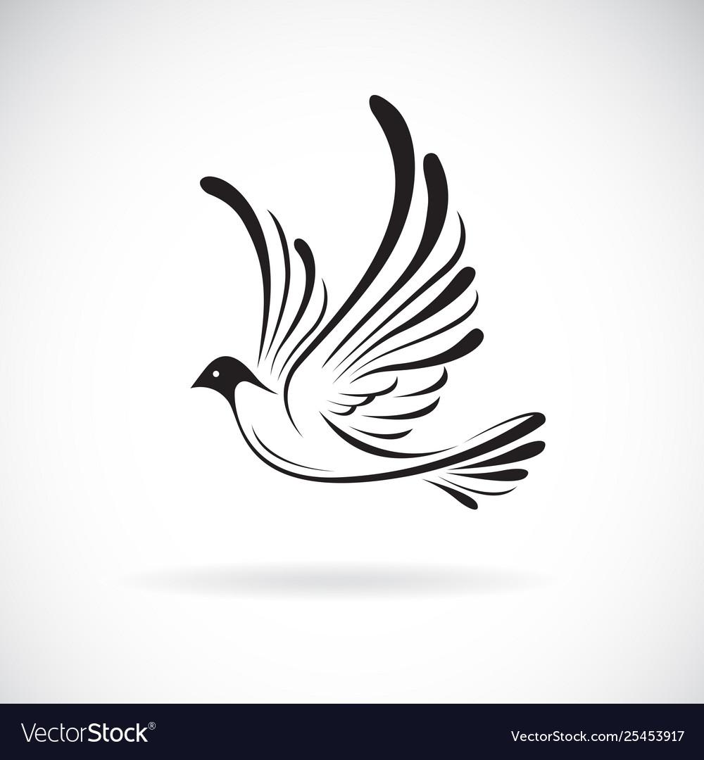 Birdsdove design on a white background wild