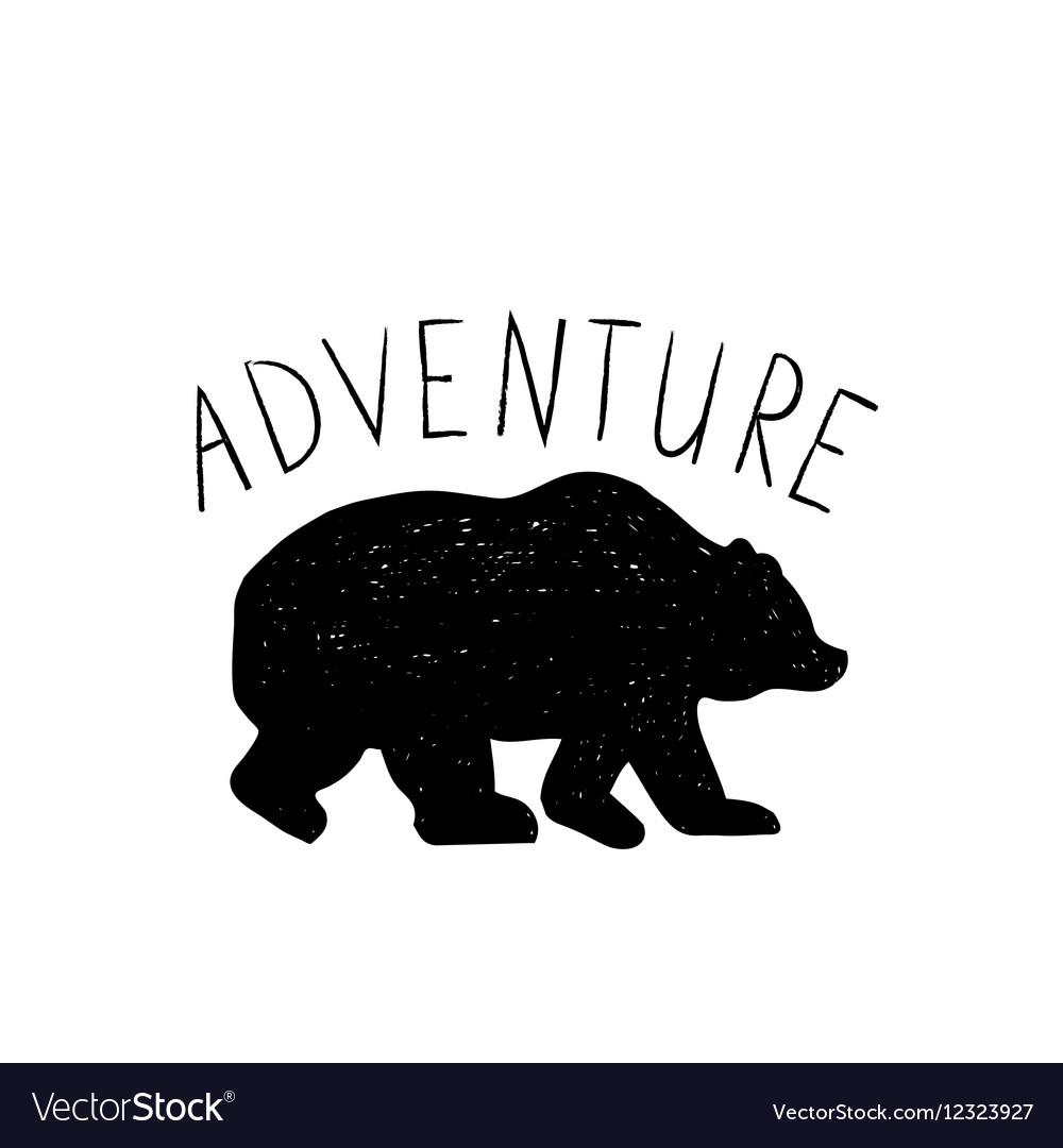 Hand drawn wild forest bear