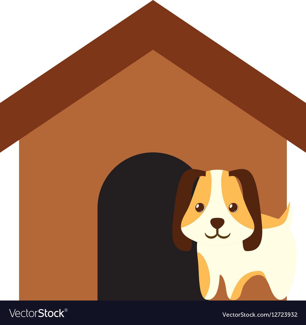 Dog animal pet ear long brown house