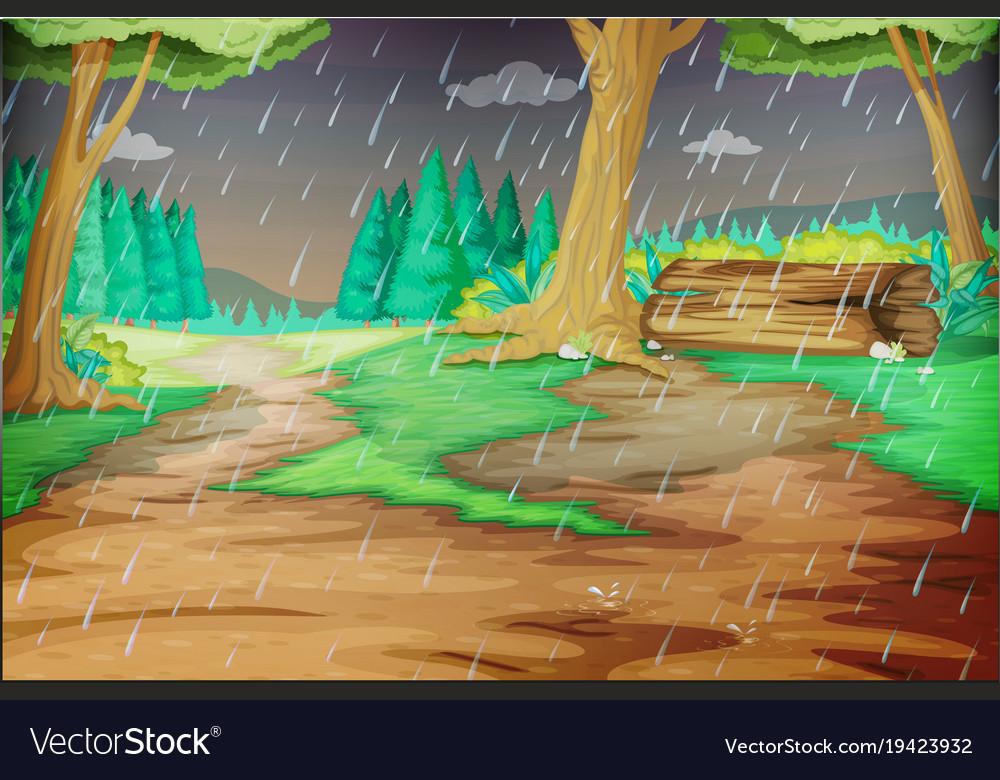 Park scene on rainy day