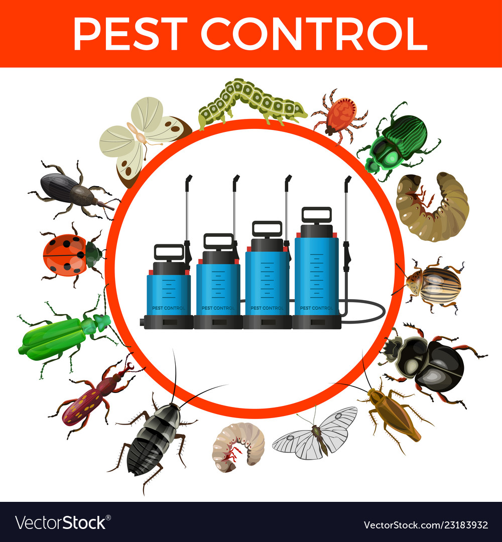 Pest control concept Royalty Free Vector Image
