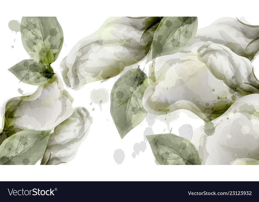 Spring white flowers bouquet watercolor background