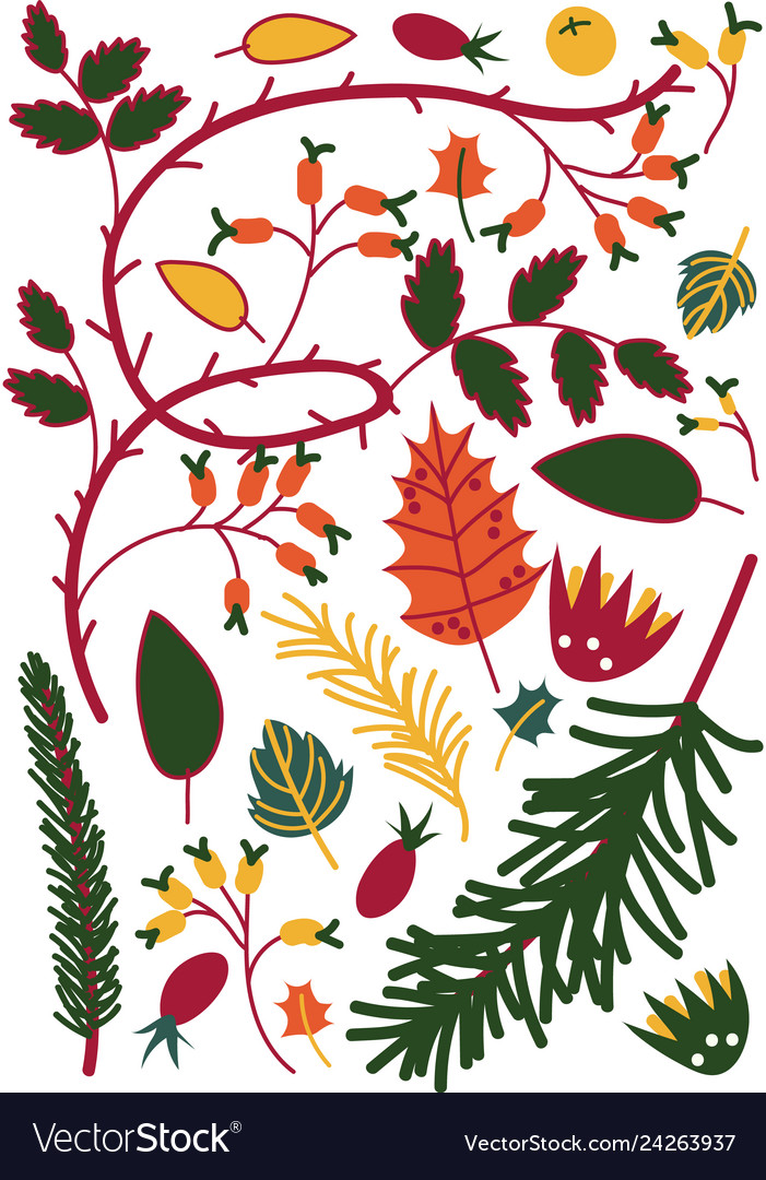 Colorful leaves and berries sprigs of briar and