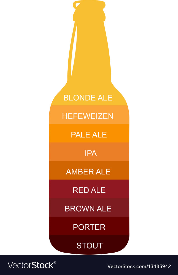 Beer Bottle Craft Vintage Type Infographic Chart Vector Image