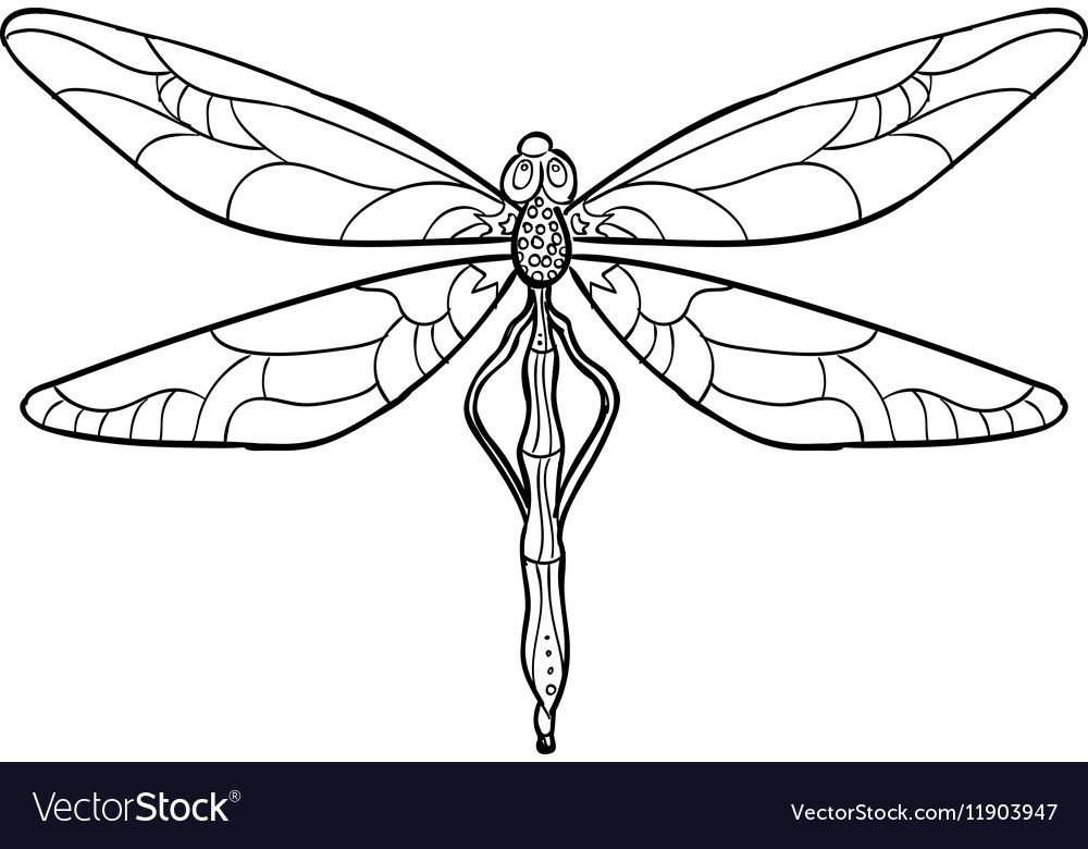 elegant dragonfly silhouette at white background vector image