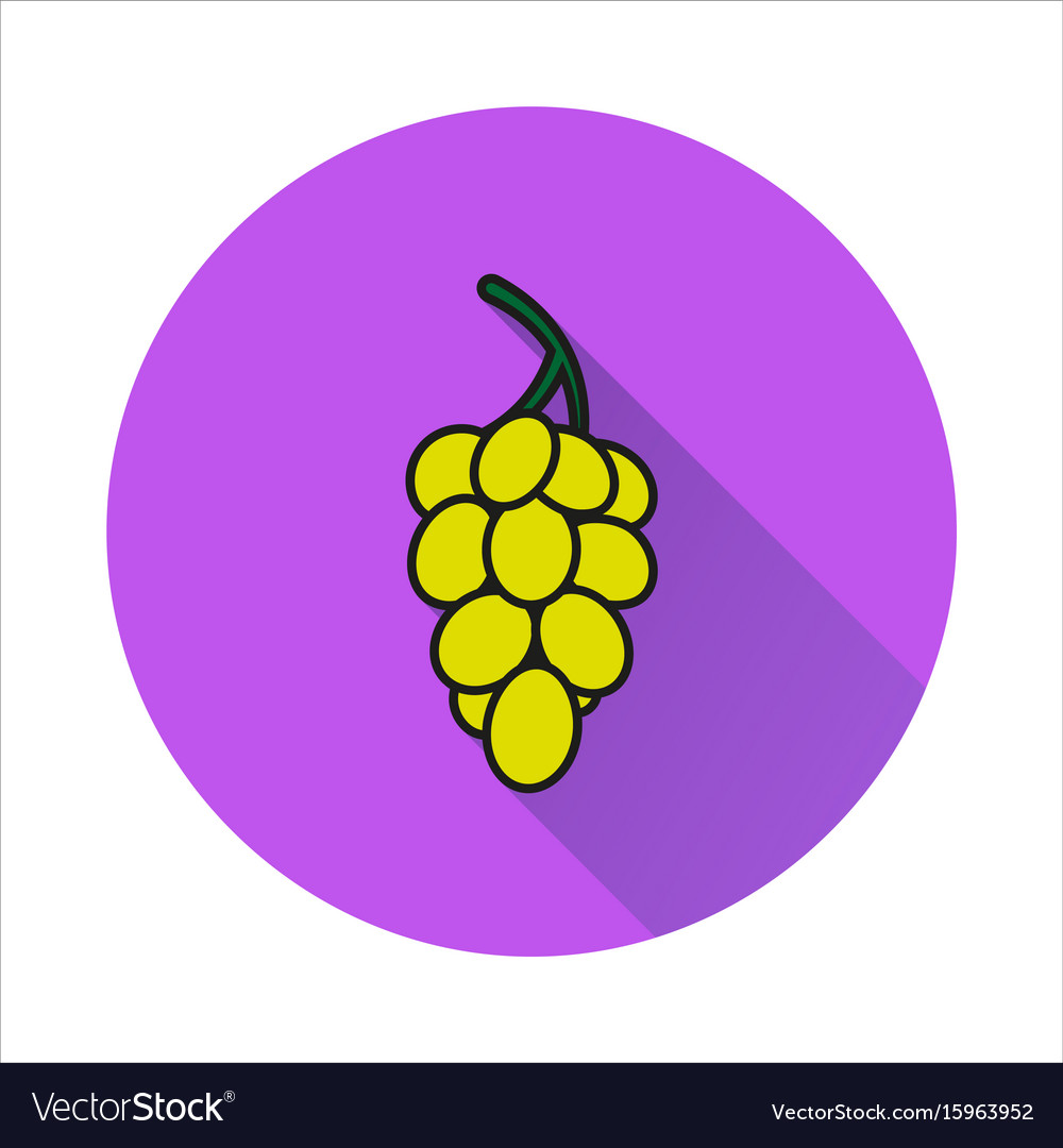 Grapes simple icon on white background