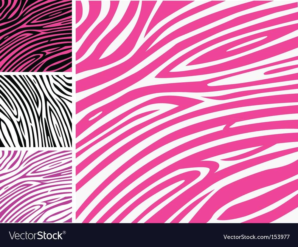 Zebra print background vector image