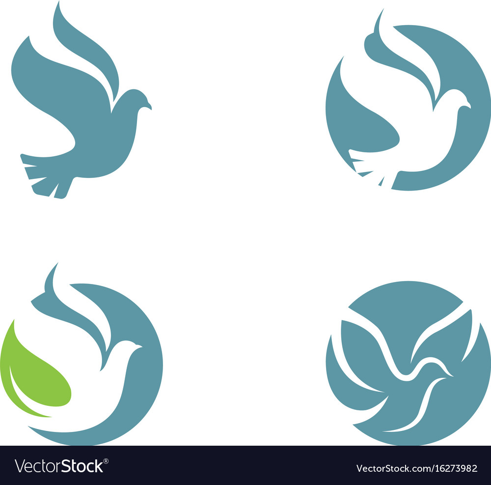 Bird wing dove logo template