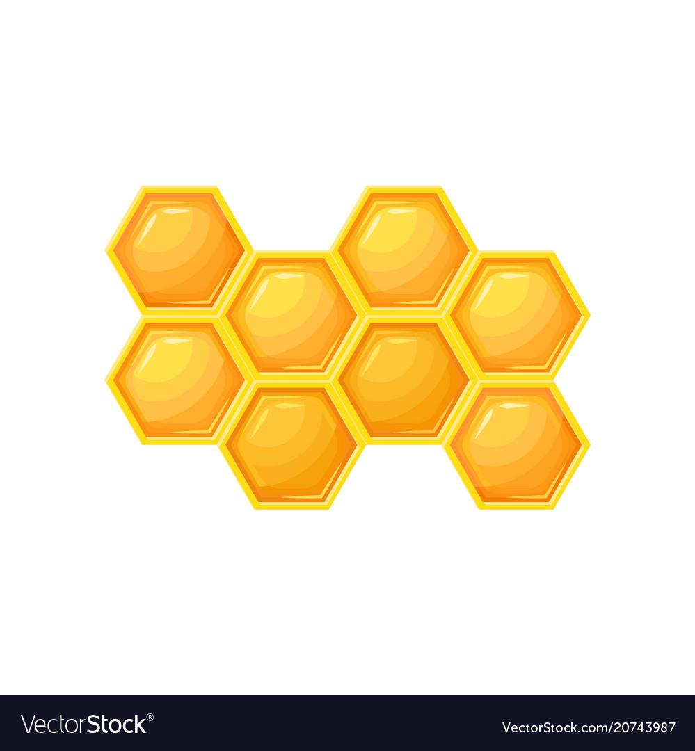 Bright cartoon icon of honeycombs natural farm vector image
