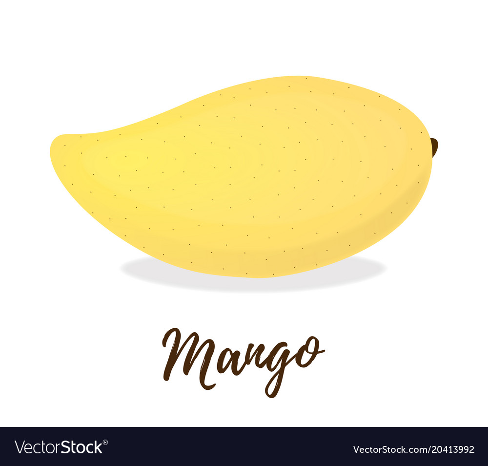 3d realistic tropical fruit - mango