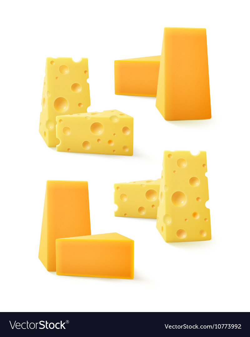 Set of Pieces Cheddar Swiss Cheese on Background