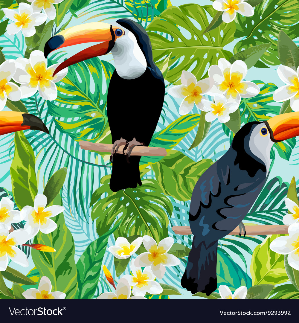 Vintage Style Tropical Bird And Flowers Background: Tropical Flowers And Birds Background Toucan Bird Vector Image
