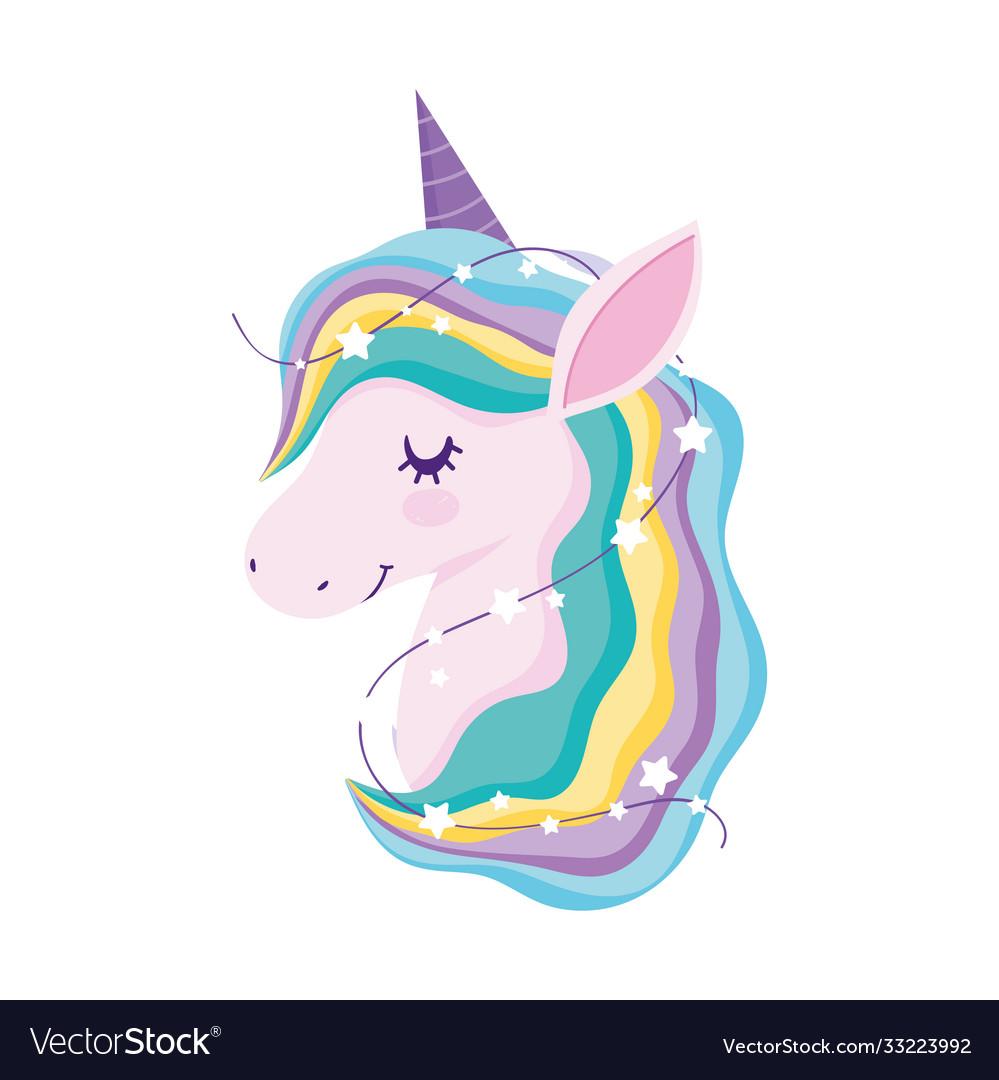Unicorn mystery rainbow mane animal fantasy