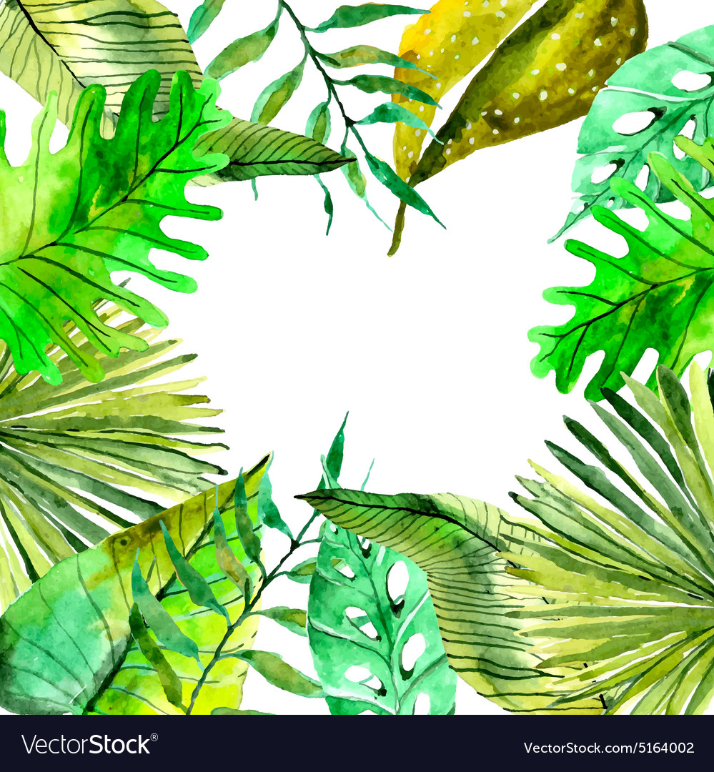 Watercolor Floral Background With Tropical Leaves Vector Image Tropical fruits and palm leaves seamless background. vectorstock