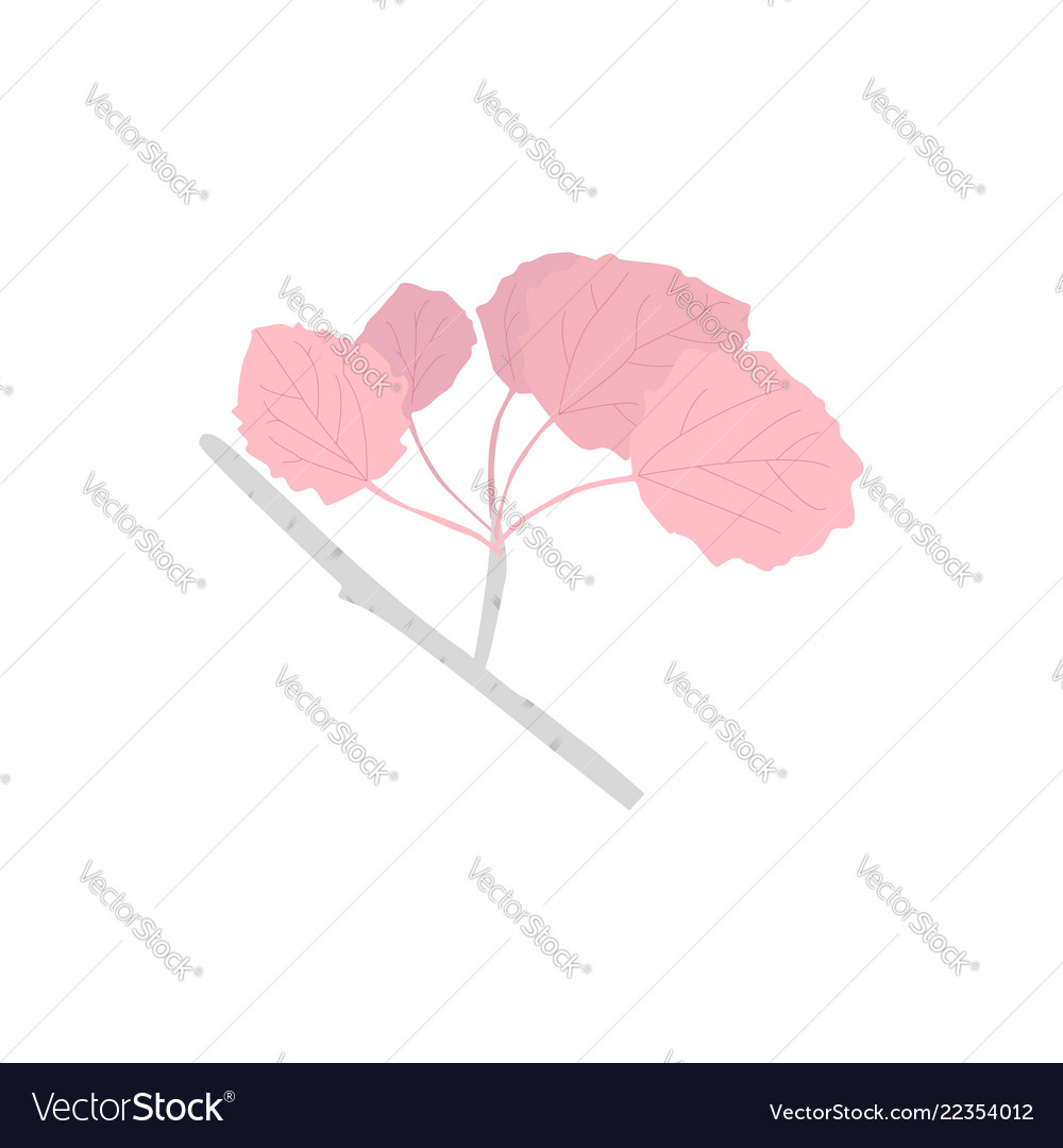 Aspen branch with pink leaves