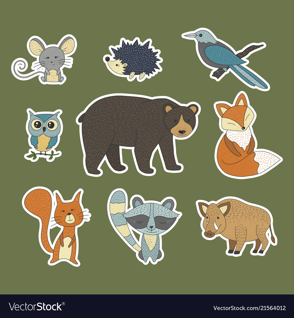 Big set with hand drawn forest animals
