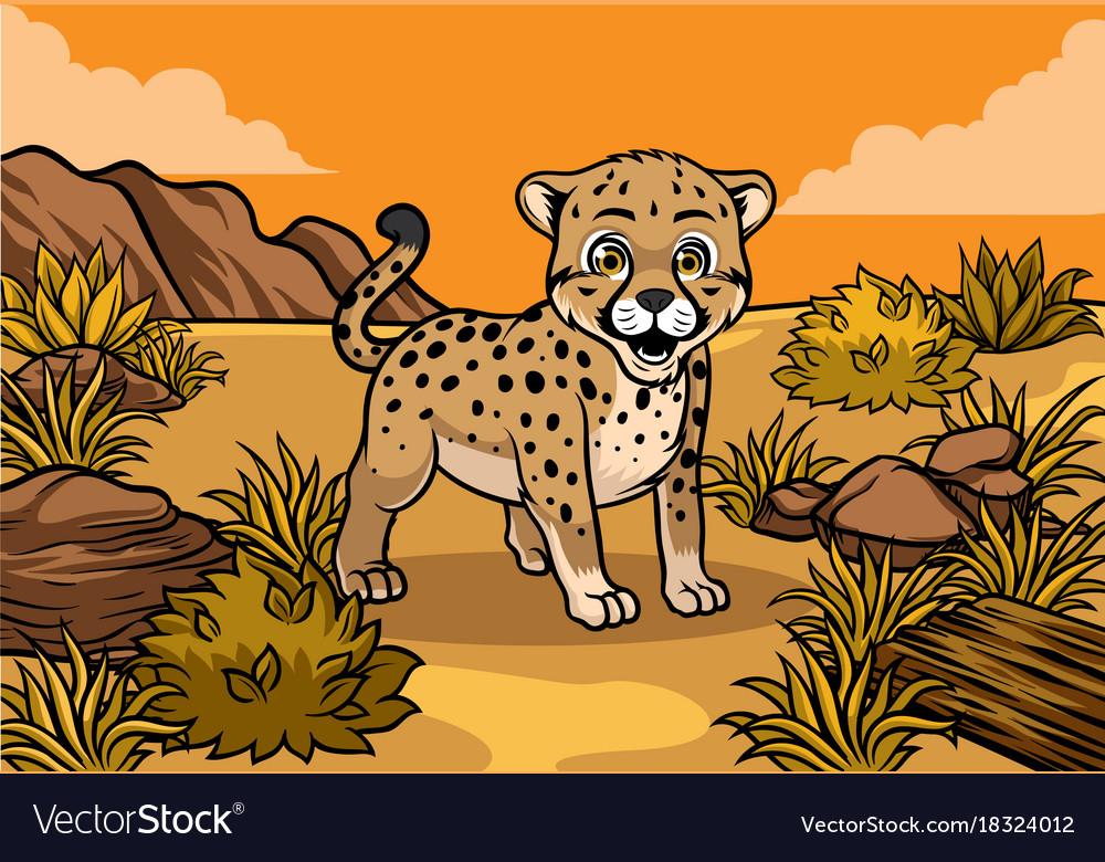 Young cheetah in the savannah vector image