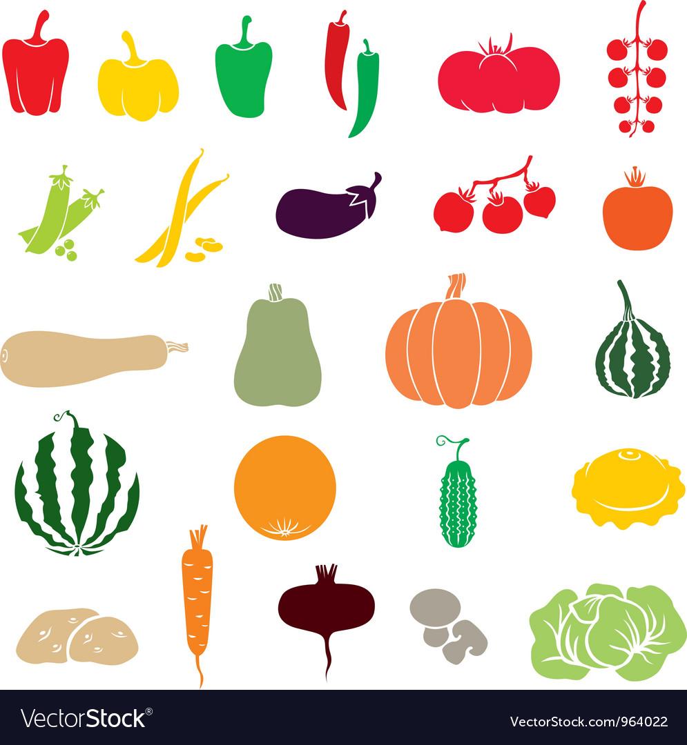 Vegetables color vector image