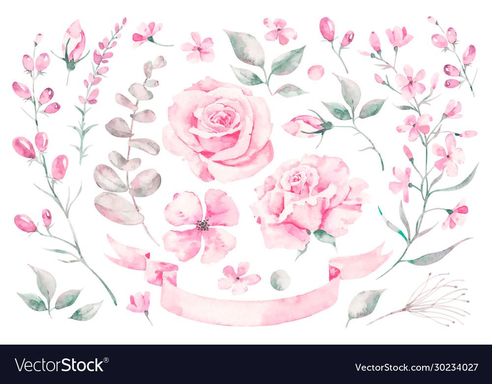 Set watercolor elements roses leaves