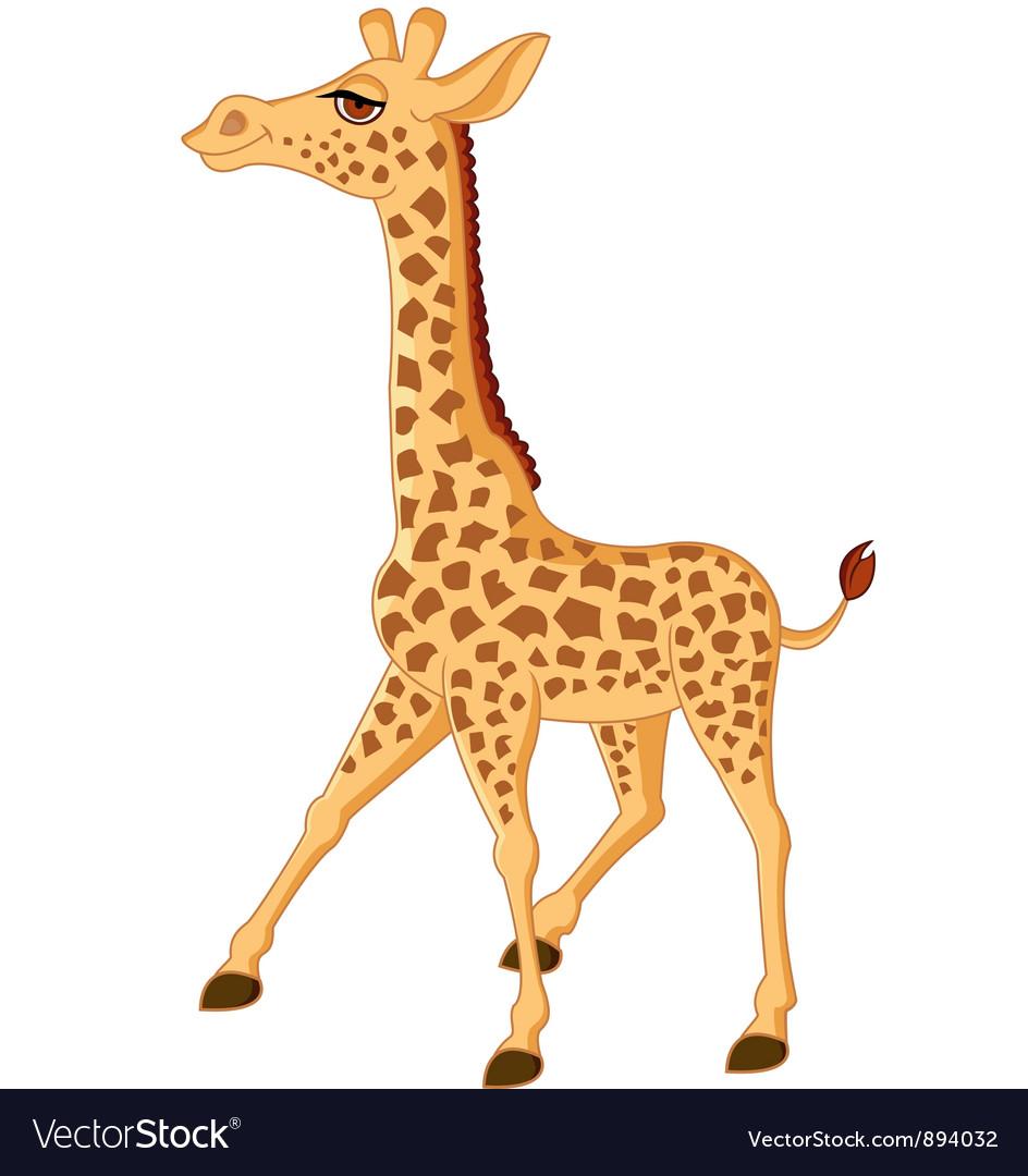 Cute giraffe isolated