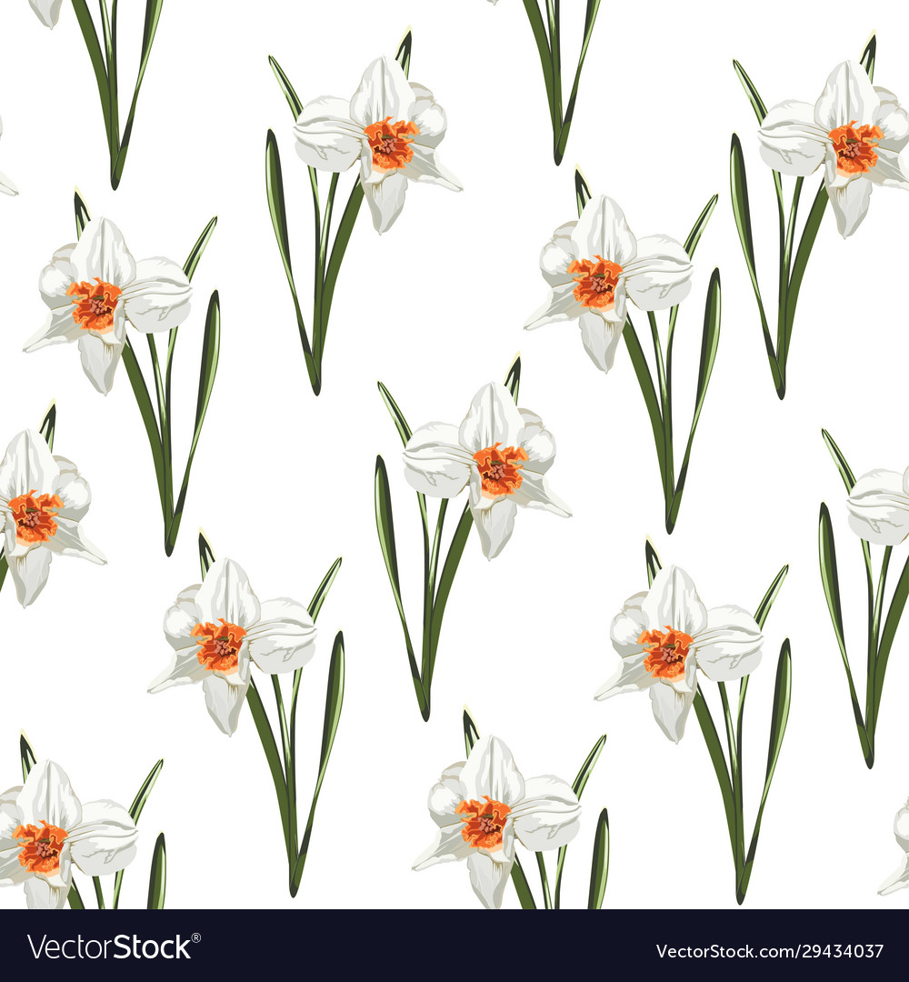 Arrangement Spring Flowers Daffodils Royalty Free Vector