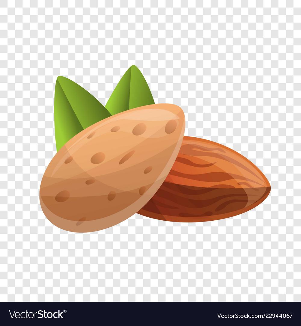 Almonds icon cartoon style