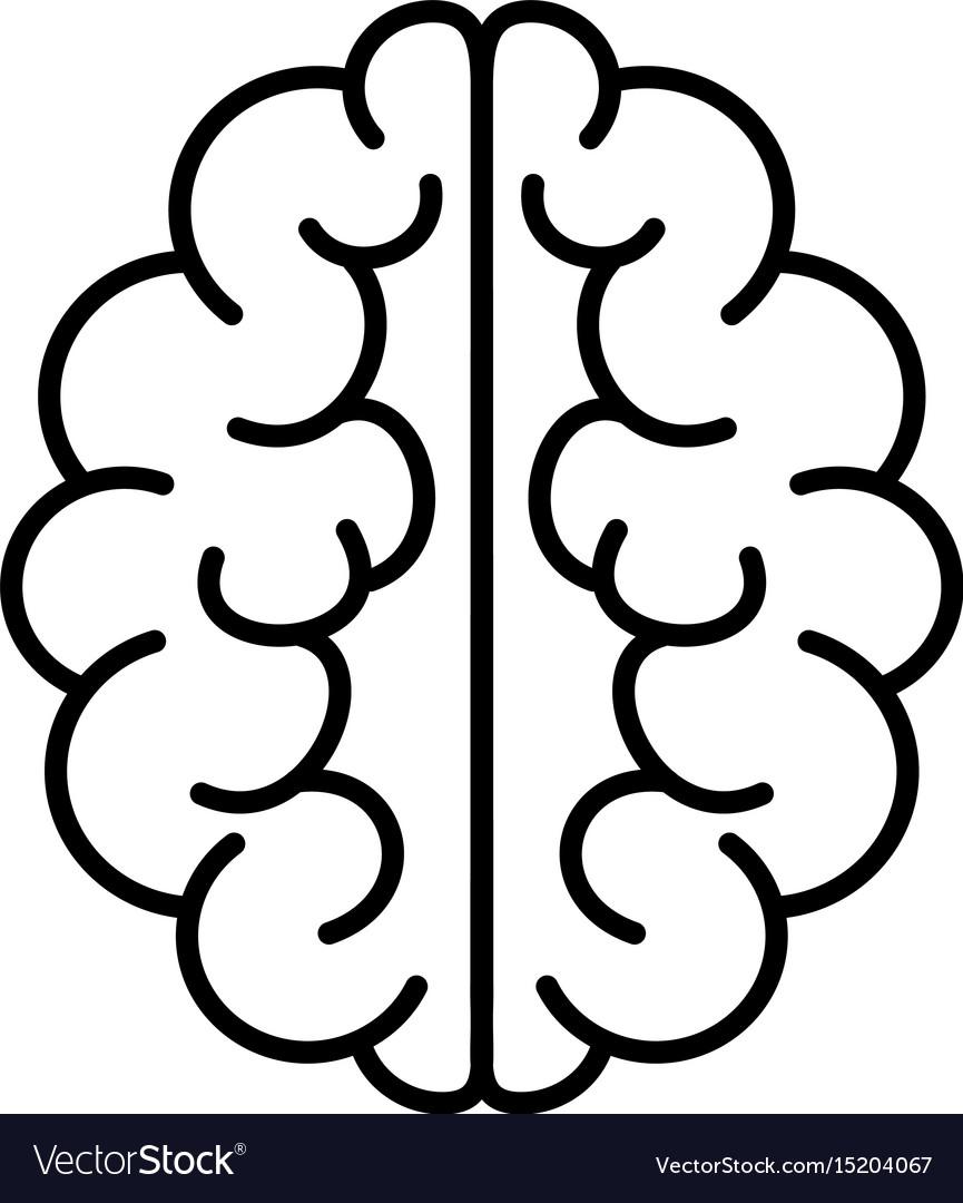 Brain icon mind symbol vector image
