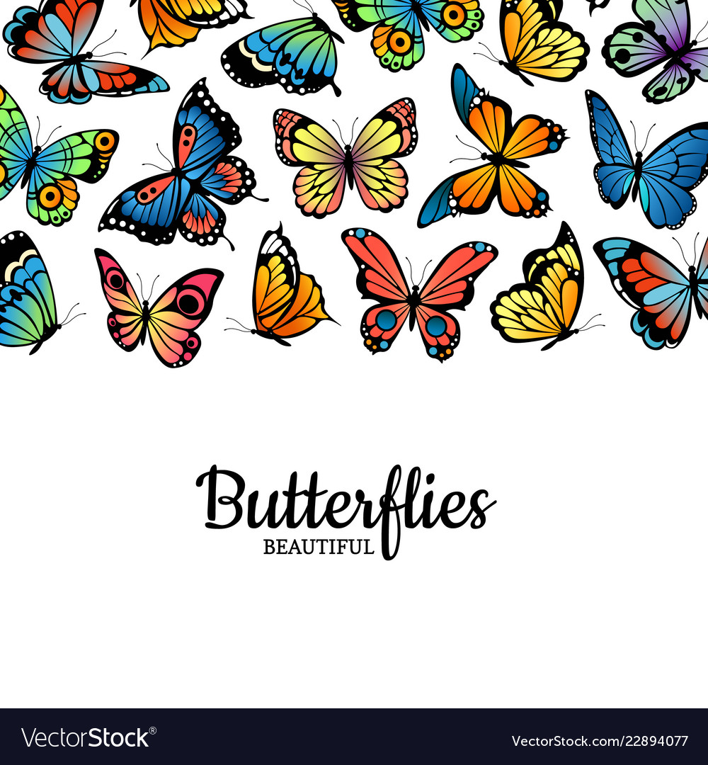 Decorative butterflies colored insects
