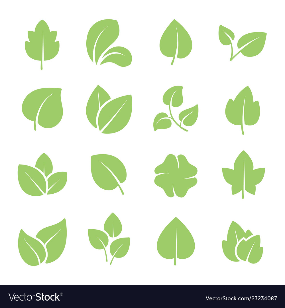 Green tree leaves ecology friendly natural