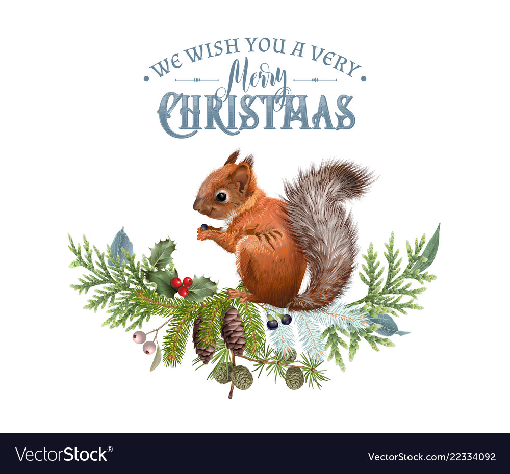 Christmas banner with branches and squirrel