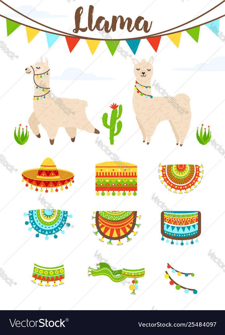 Cute alpaca and llama with saddlery sombrero hat