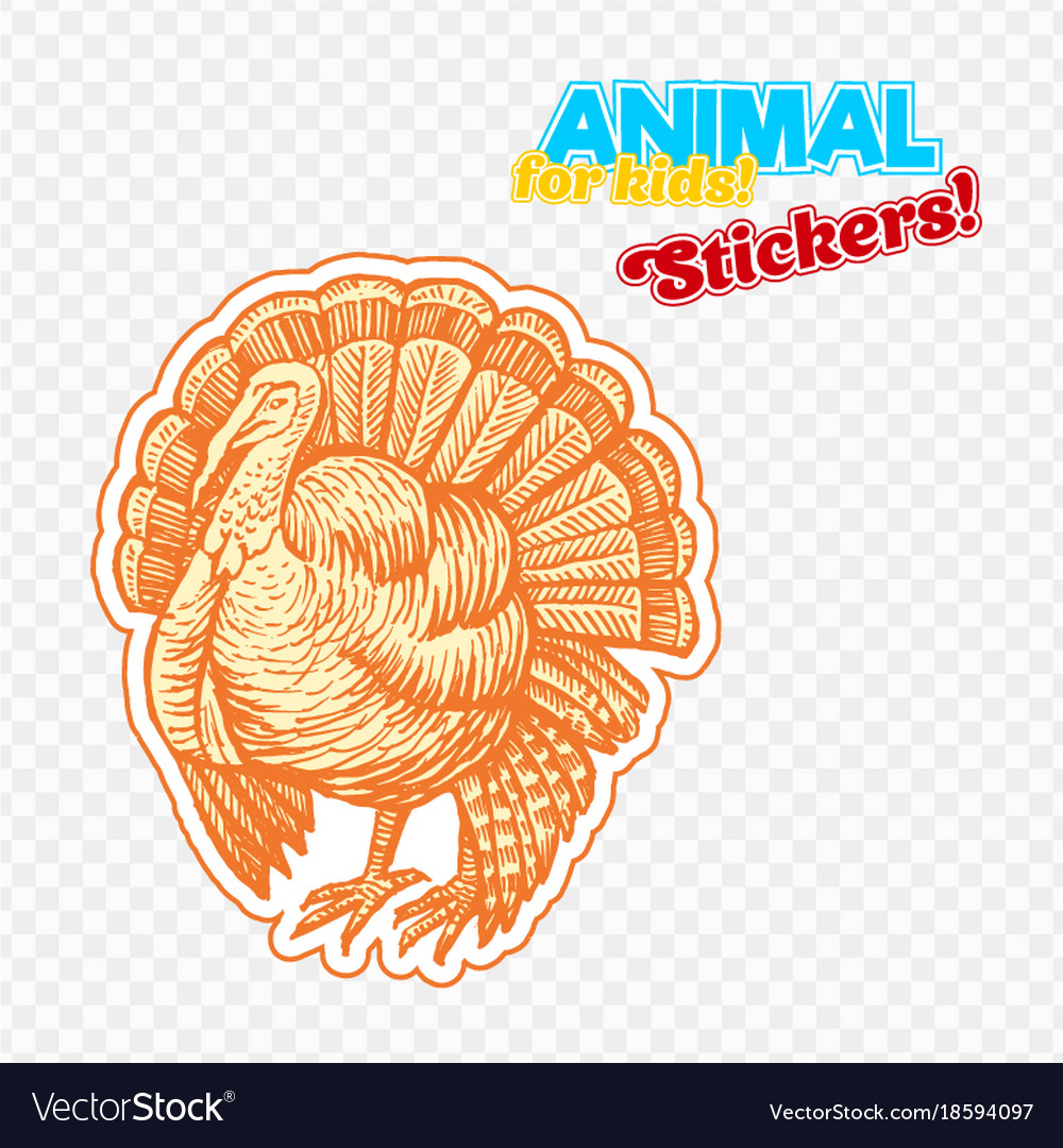 Farm animal turkey in sketch style on colorful