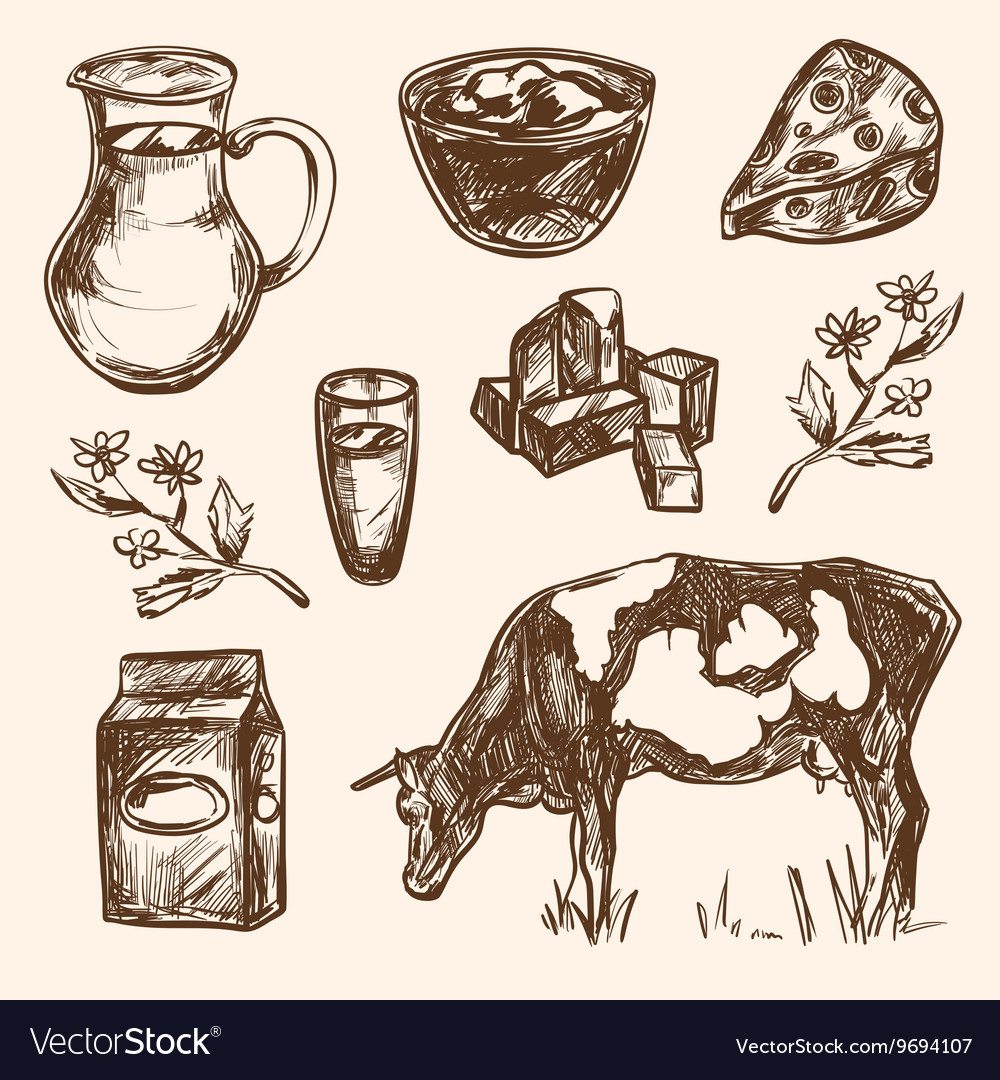 Dairy products hand drawn decorative icons set