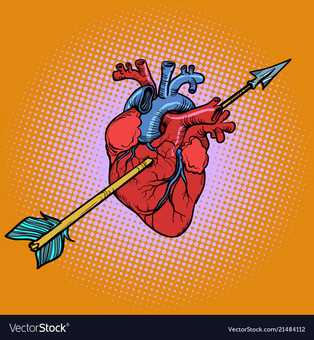 Real heart with cupid arrow