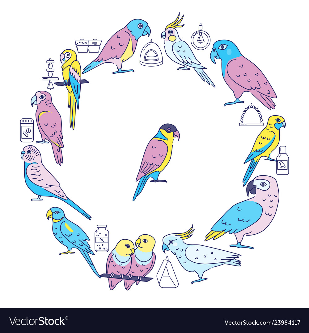 Parrots round concept banner in line style