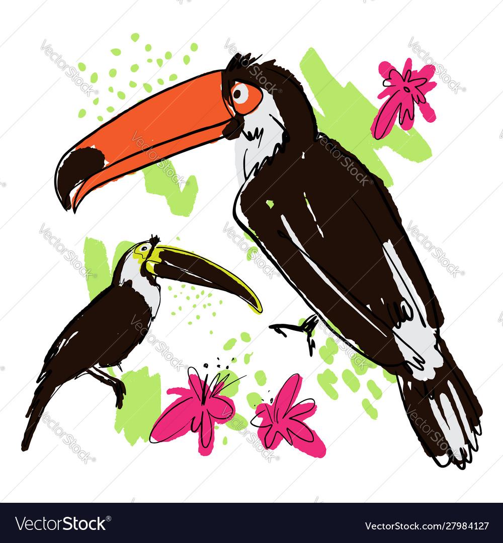 Hand draw tropical birds