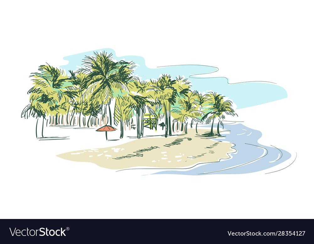 Palm beach sketch landscape line skyline