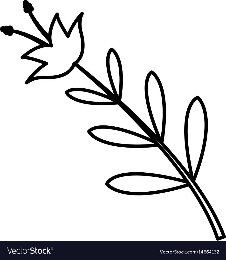 Flower leaves natural spring decoration image line vector image