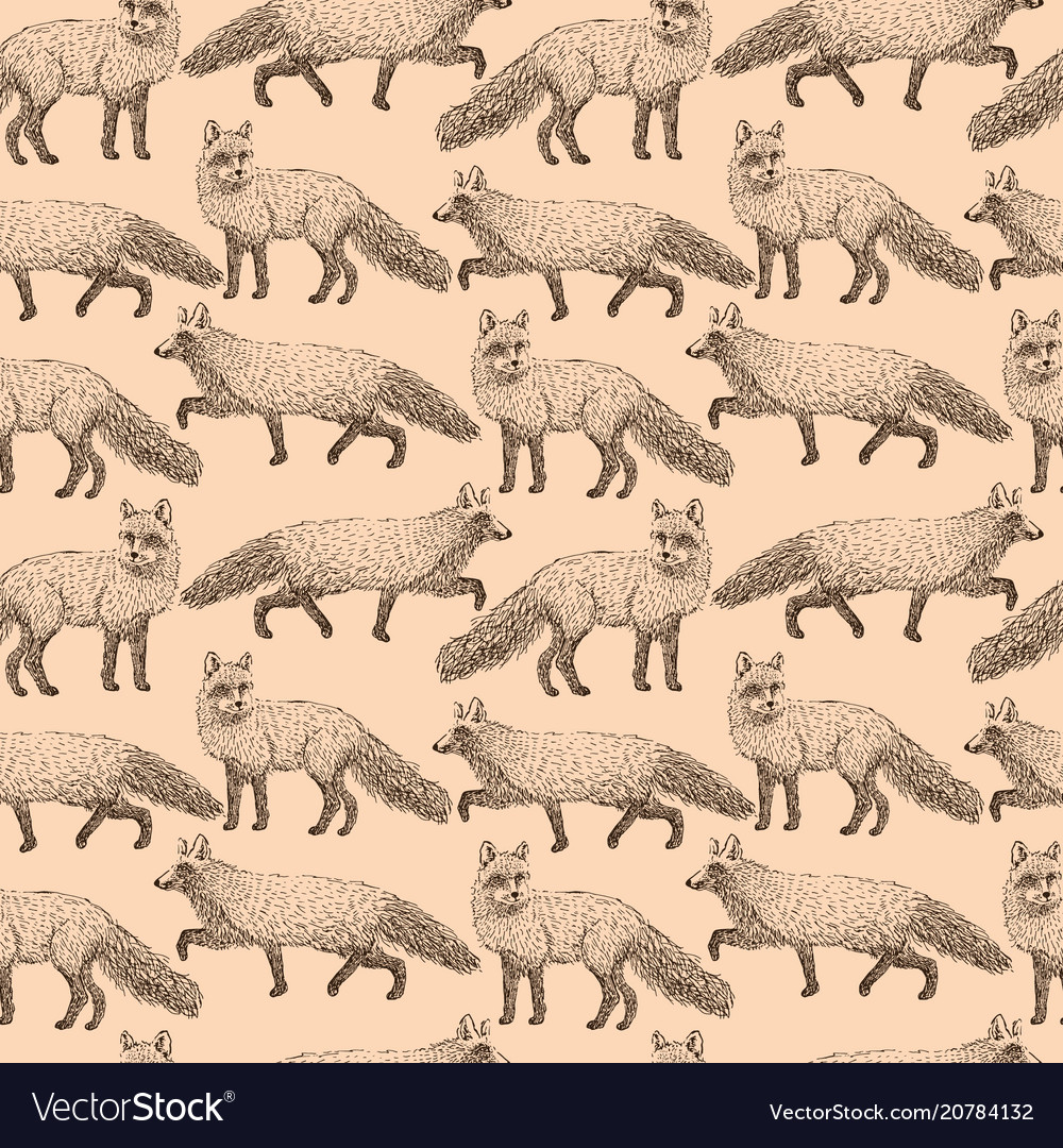 Fox seamless pattern sketch hand drawn