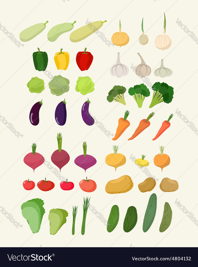 Set of fresh vegetables Isolated carrot and