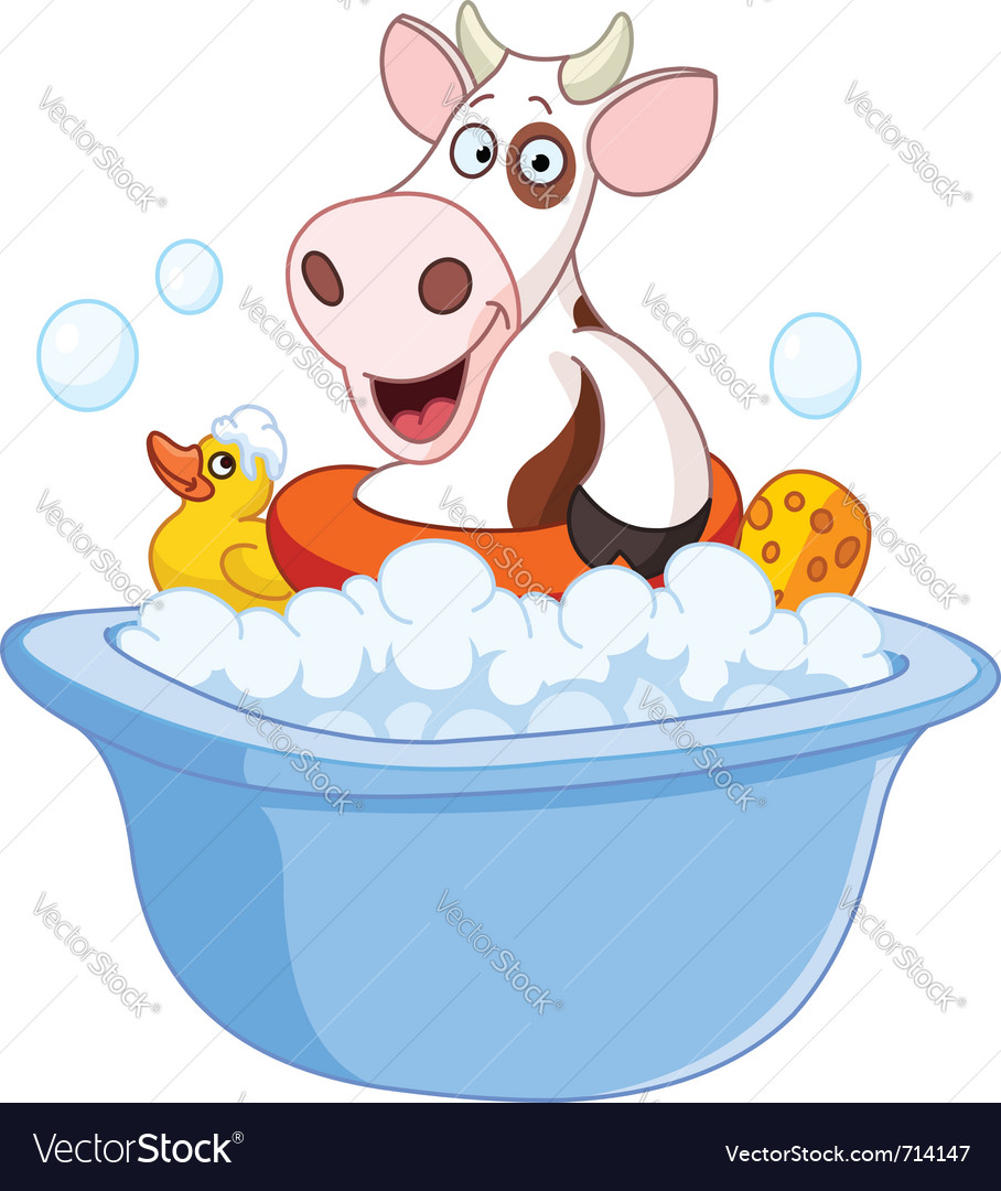 Cow taking a bath vector image