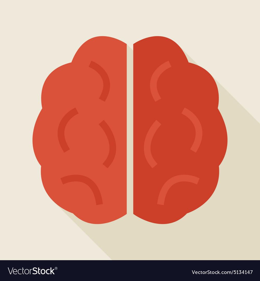 Flat Knowledge Human Brain with long Shadow