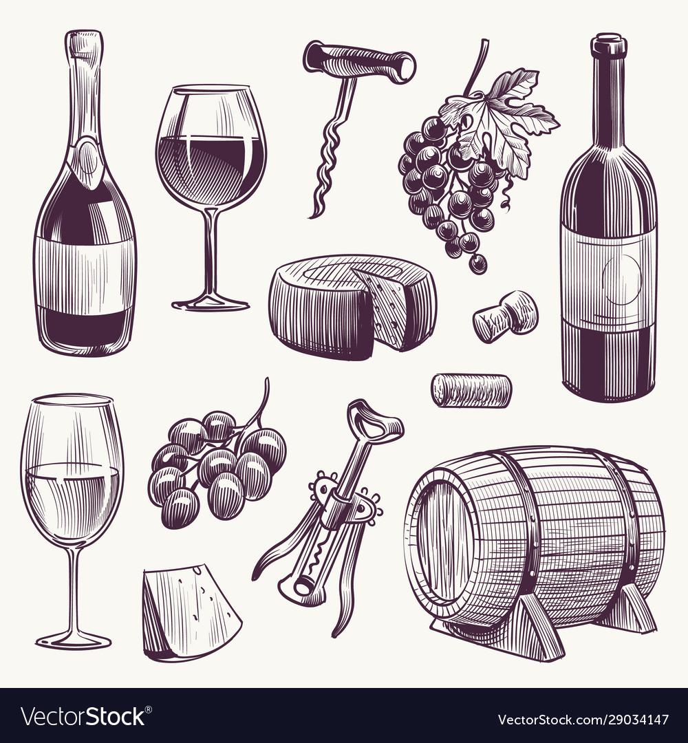 Sketch wine wine bottle and wineglasses grape