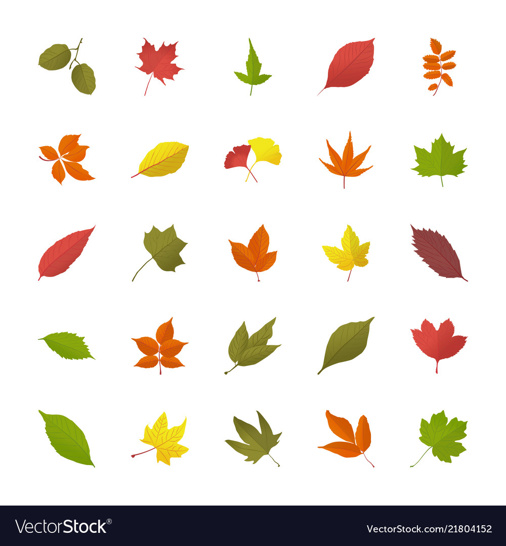 Leaves In Fall Flat Icons Royalty Free Vector Image
